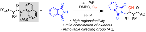 aminooxygenation