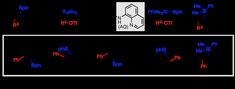 arylboration
