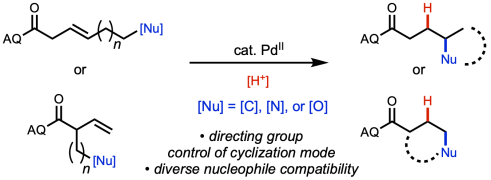 directed-cyclization
